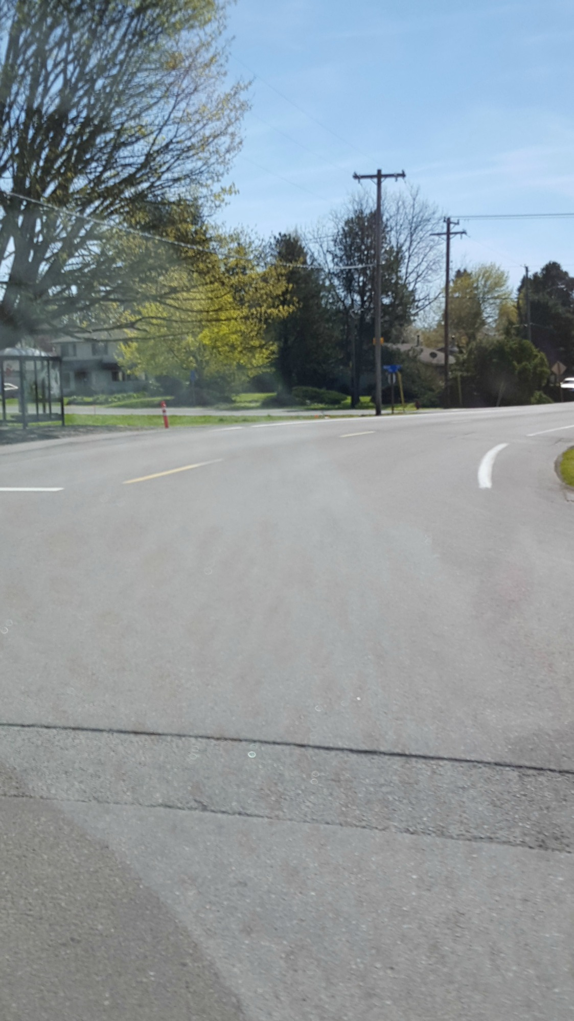 pic of road son ran onto